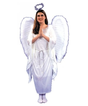 Angel Dress Costume - Adult