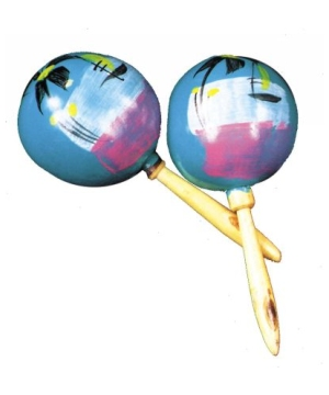 Maracas Set of Two Party Supplies