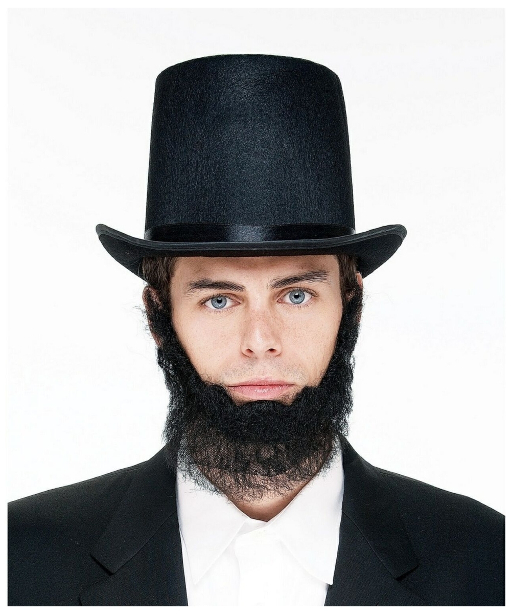 Abe Lincoln Beard Adult Costume Accessory At Wonder