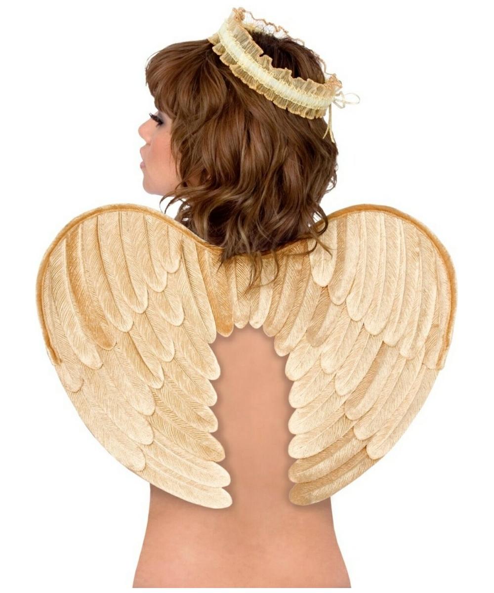 Gold Velvet Angel Wings And Halo