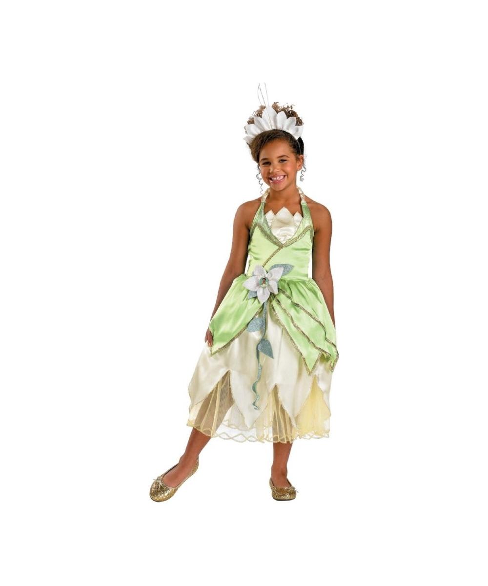 Princess Tiana Outfit: Tiana Princess Kids Costume