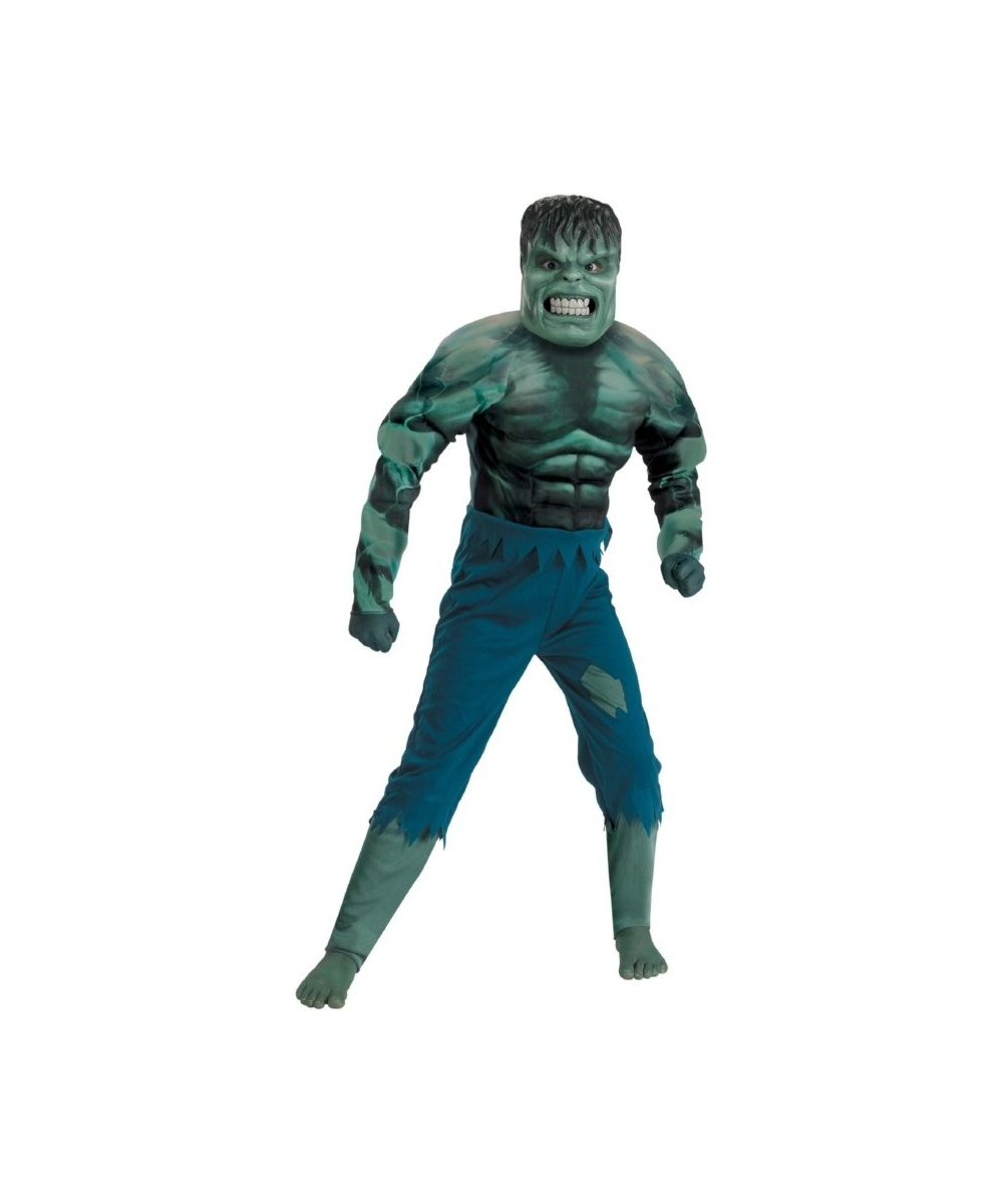 Incredible Hulk Muscle Boys Costume  sc 1 st  Wonder Costumes & Hulk Incredible Muscle Kids Costume - Boy Movie Costumes