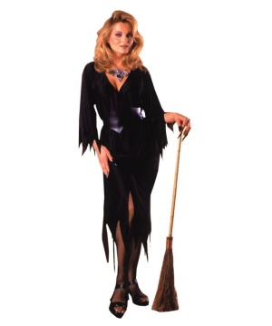 Bewitching Witch Women Costume