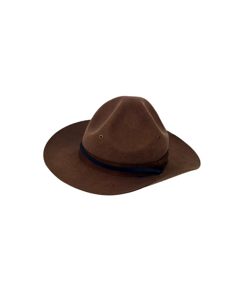 dad5e1e6 Campaign Hat Accessory