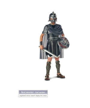 Classic Gladiator Boys Costume
