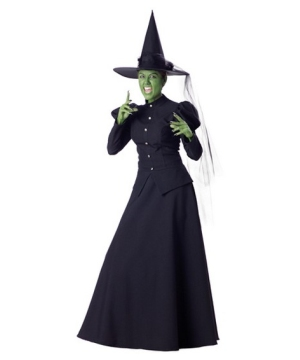Wicked Witch Womens Costume deluxe