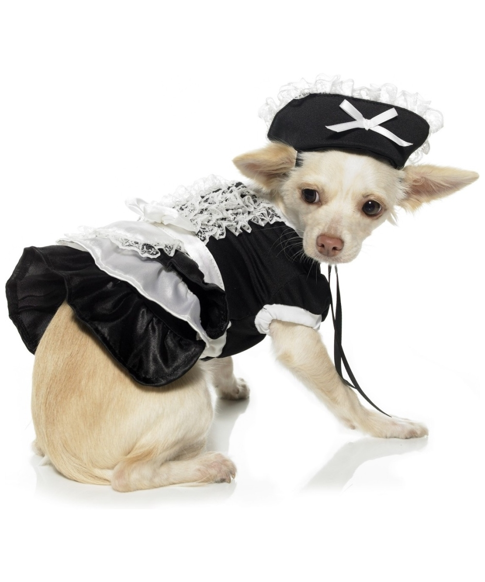 French Maid Pet Costume