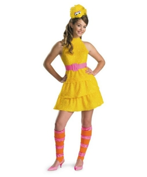 Sesame Street big Bird Teen Costume