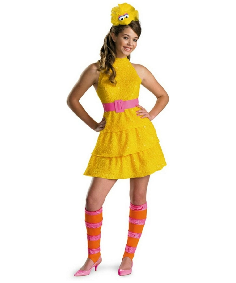 Big Bird Costume Childteen Costume Movie Costumes At Wonder