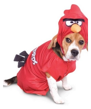 Angry Birds Pet Costume