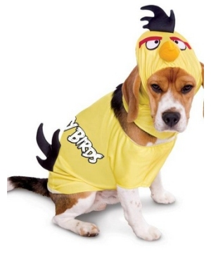 Rovio Angry Birds Pet Costume  sc 1 st  Halloween Costumes : jockey dog rider pet costume  - Germanpascual.Com