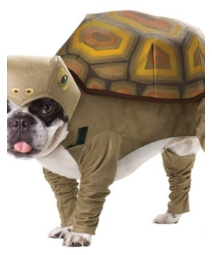 Turtle Costume - Dog Costume  sc 1 st  Wonder Costumes & Pet Costumes - Dog and Cat Costumes for Halloween