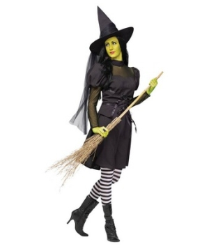 The Wicked Witch of the West Women's Costume