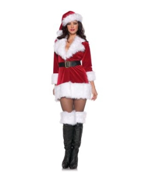 Secret Santa Womens Costume