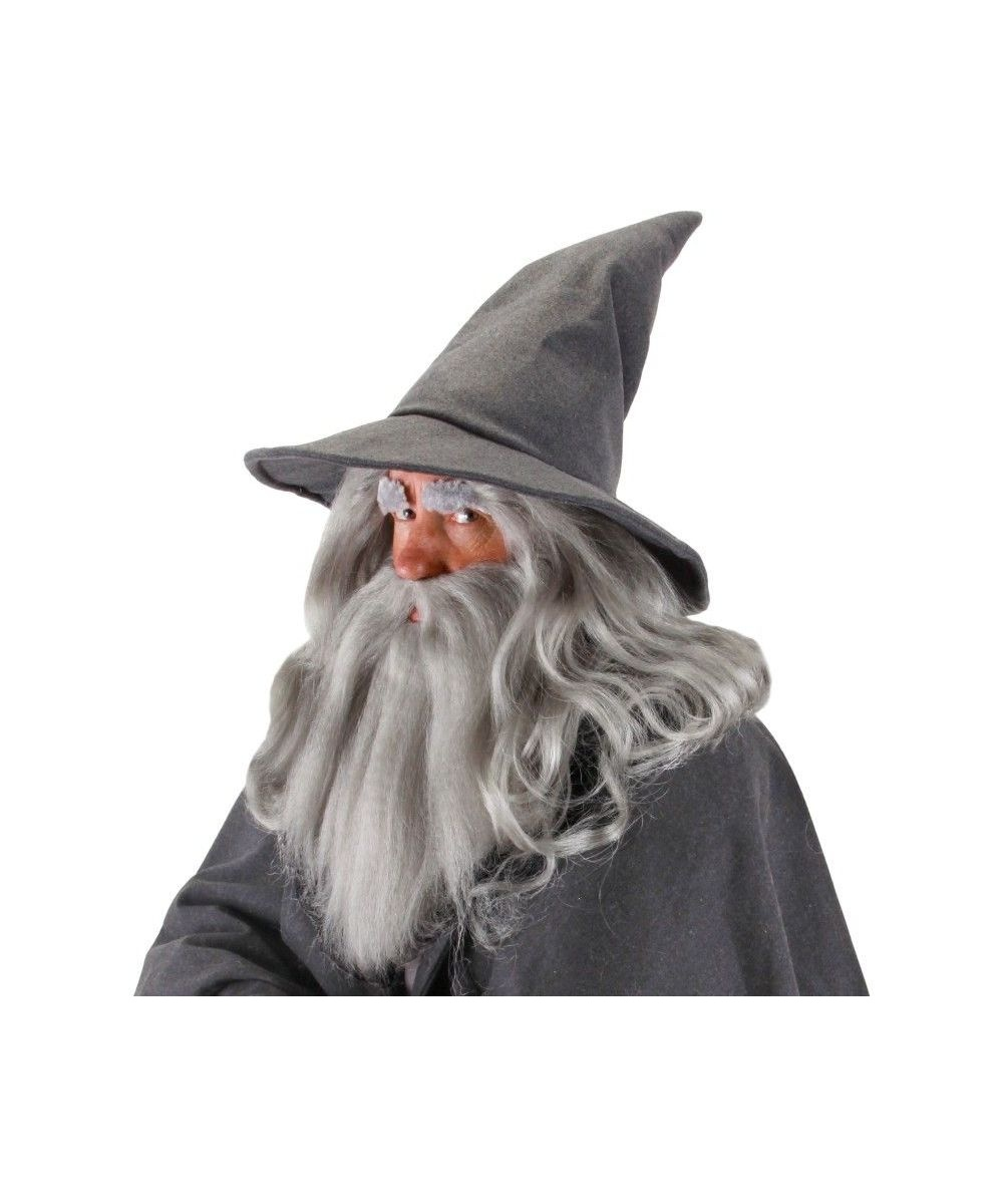 The Hobbit Gandalf Beard Movie Halloween Accessory Kit