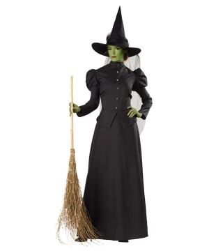 Witch Classic deluxe Womens Costume