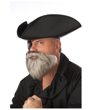 Aging Pirate Gray Beard