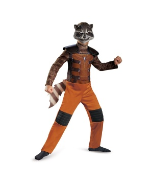 Raccoon Boys Costume