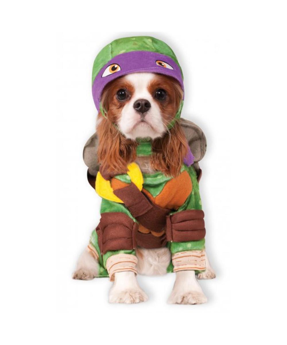 Cute Pet Supplies Dogs