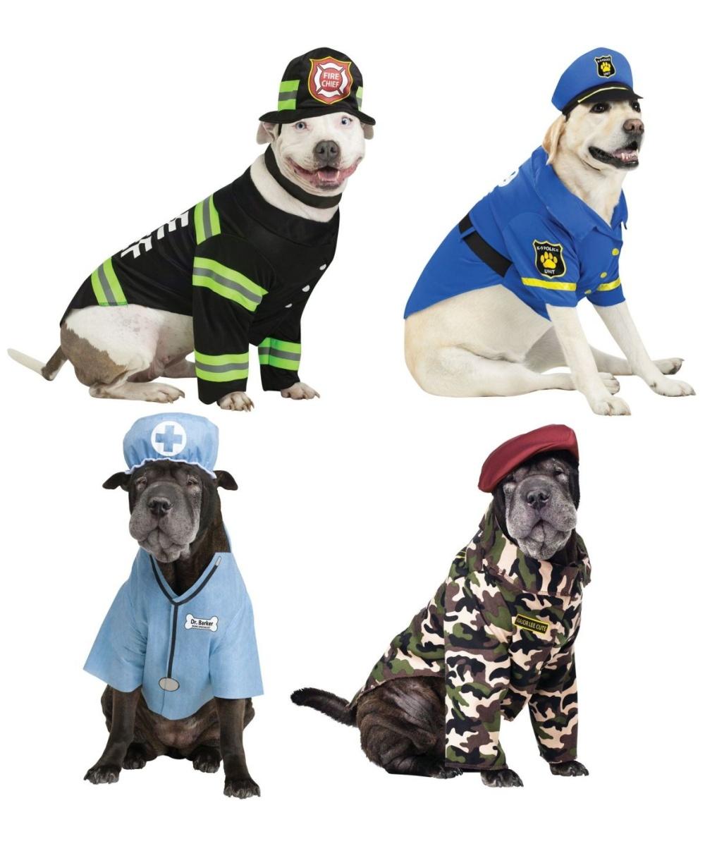 sc 1 st  Wonder Costumes & K9 Occupation Pet Costume