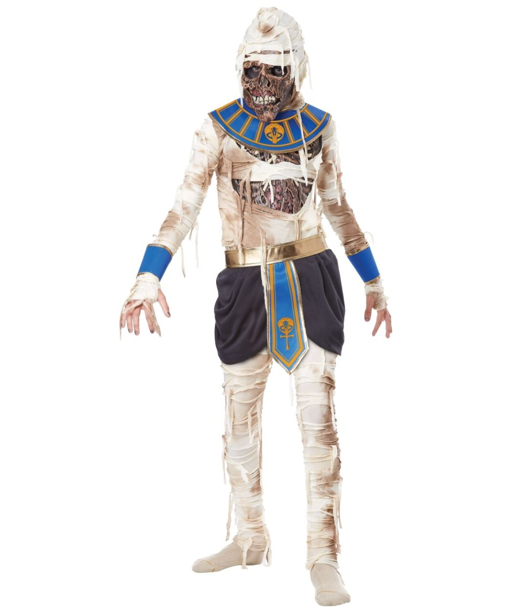 sc 1 st  Halloween Costumes & Pharaohs Revenge Mummy Boys Costume - Boys Egyptian Costumes