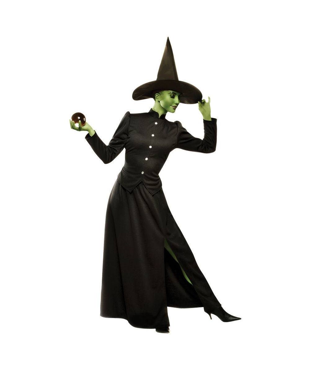 Womens Wicked Witch Costume