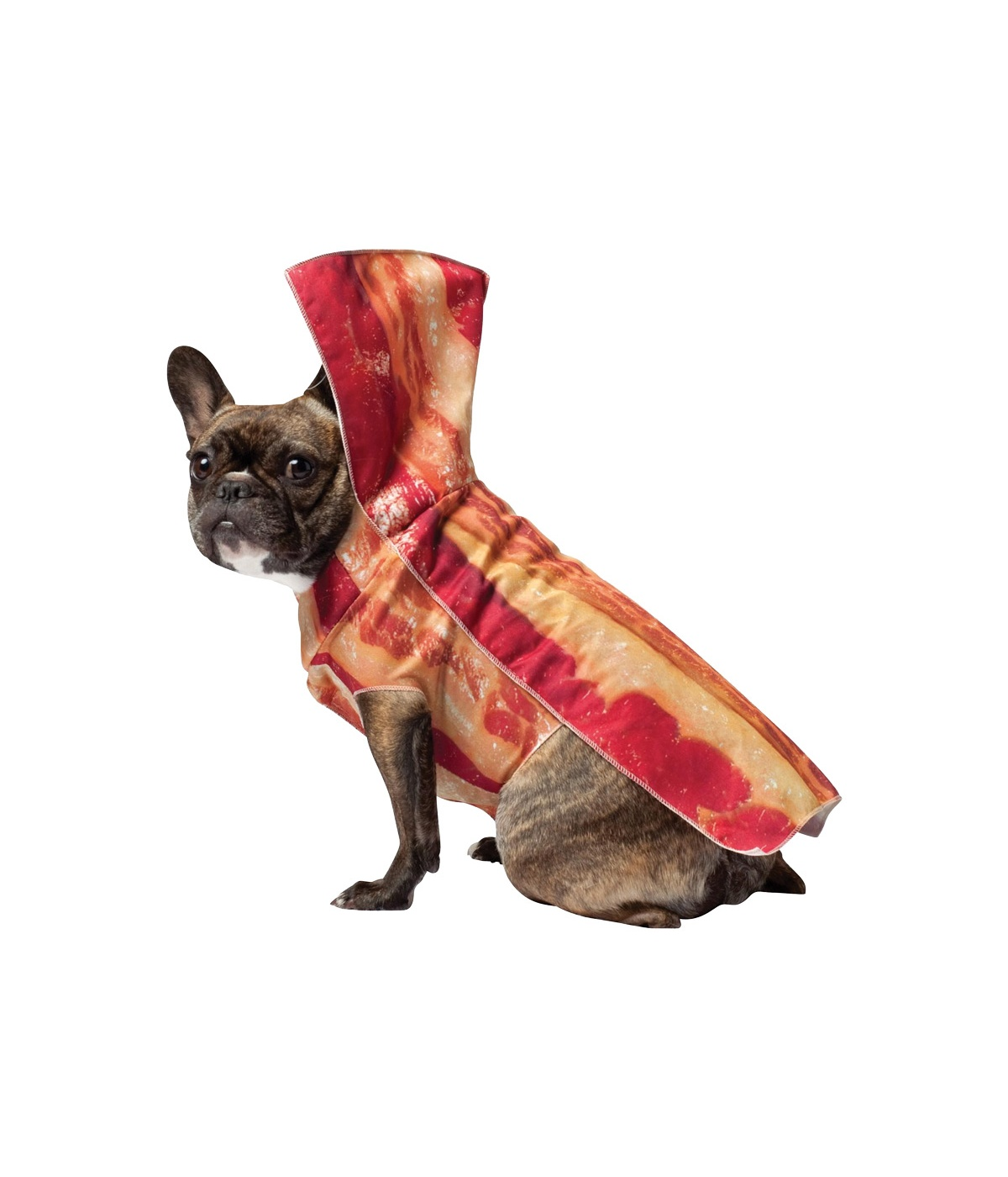 Sizzling Bacon Dog Costume