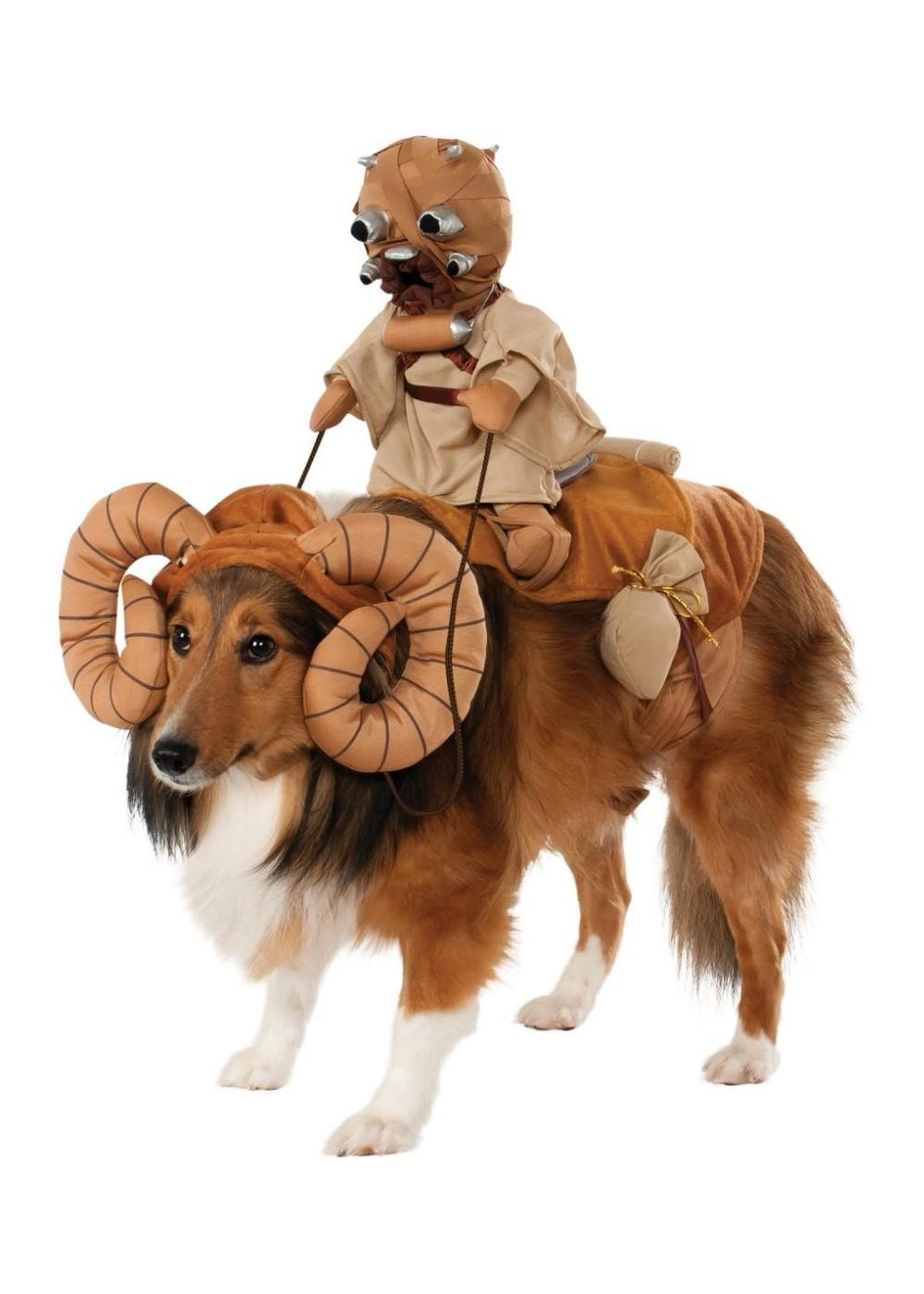 Stars Wars Dog Bantha Rider Costume