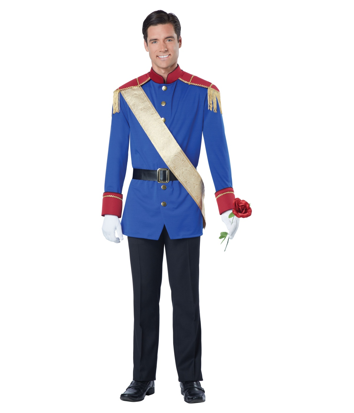 sc 1 st  Halloween Costumes & Storybook Prince Charming Man Costume - Fairy Costumes
