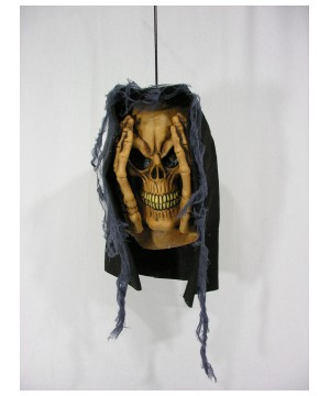 Peeping Window Prop Skull