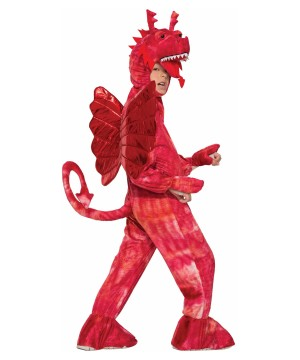Red Dragon Boys Costume