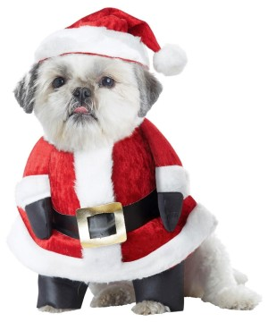 Santa Paws Christmas Pet Costume