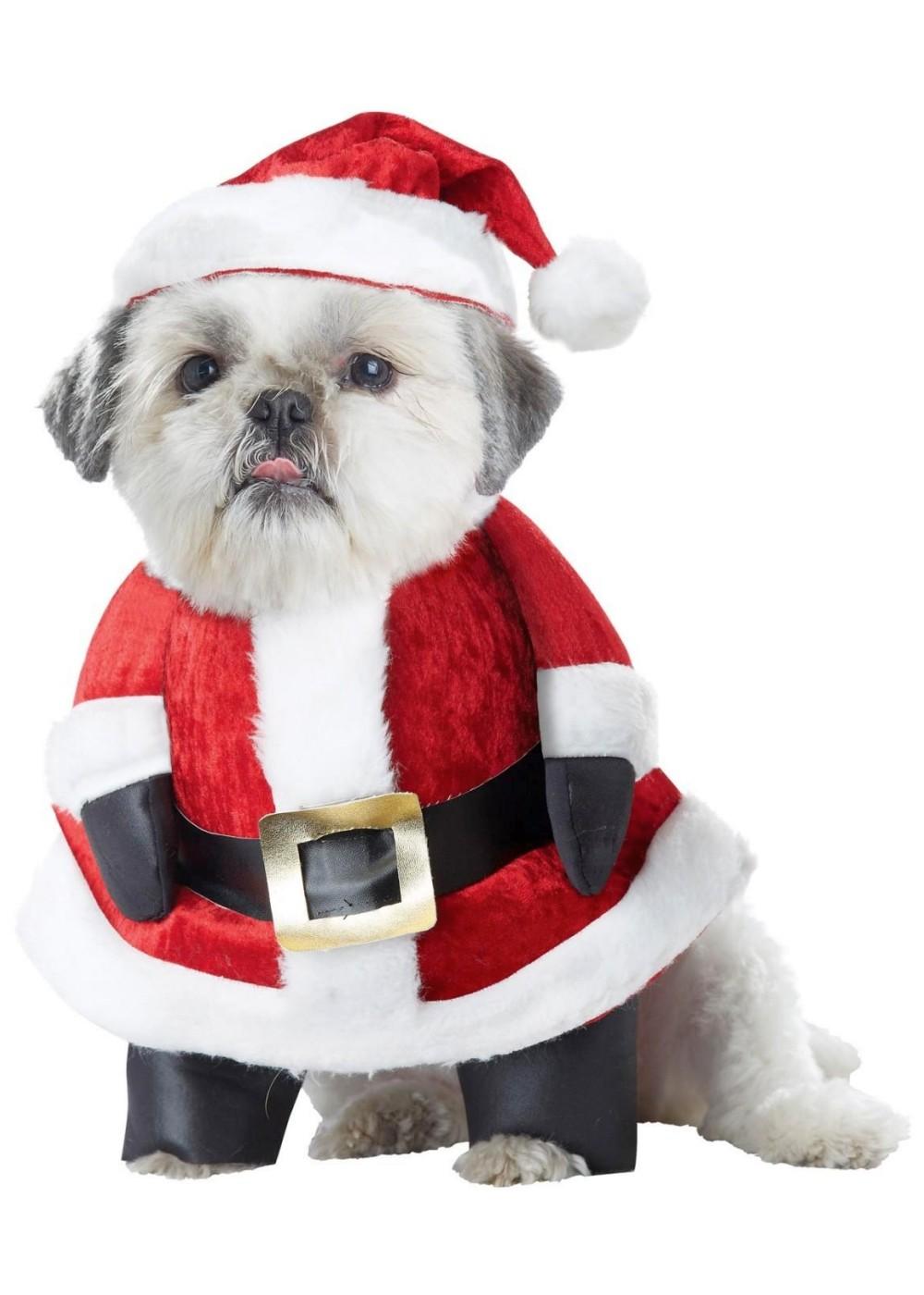 Christmas Pet Costumes.Santa Paws Christmas Pet Costume Christmas Costumes