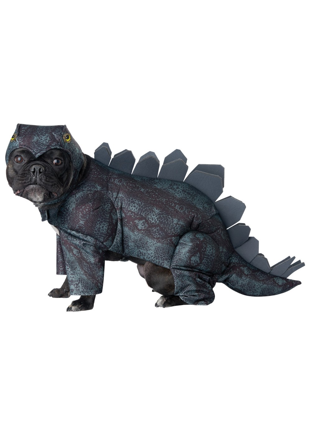 Dog Stegosaurus Costume