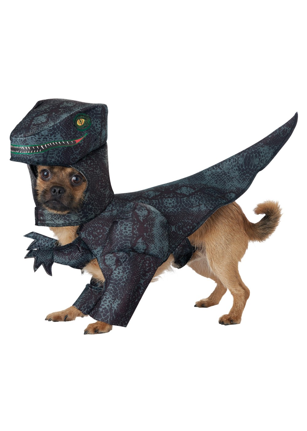 Doggy Dinosaur Costume