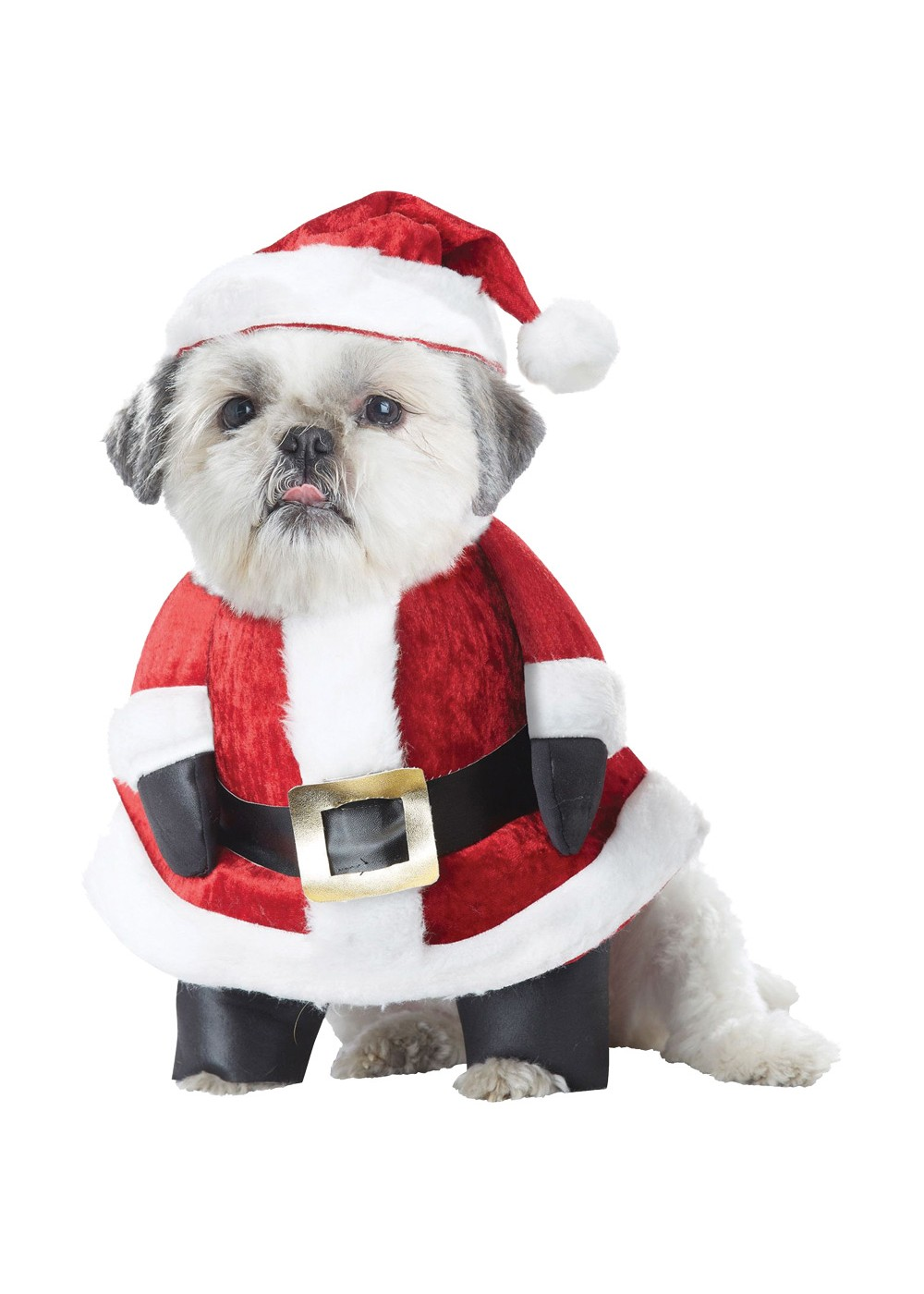 Dogs Santa Paws Costume