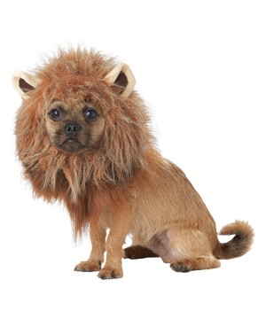 King of the Jungle Pet Costume