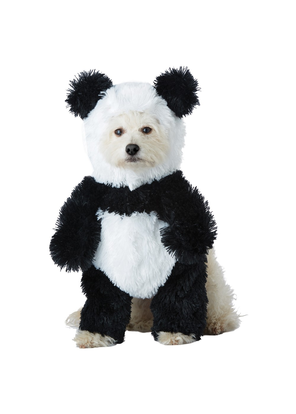 Panda Pouch Dog Costume